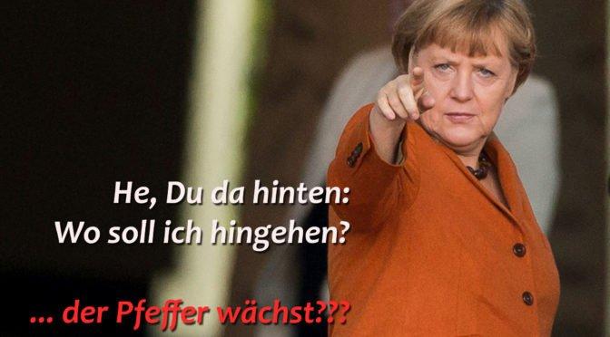 Armer Thomas, braver Merkelianer bis zum Untergang – Vera Lengsfeld